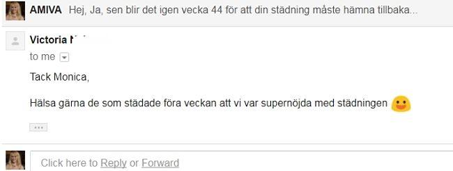 hemstädning norrköping Amiva AB